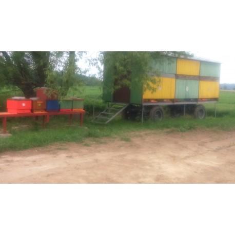 Prodej medu- Tomáš Maleček- okres Strakonice