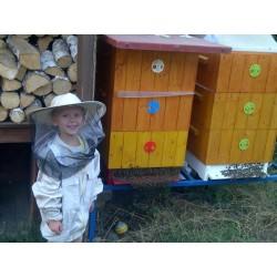 Prodej medu- Radek Baloun- okres Mělník