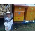 Prodej medu Radek Baloun- Všetaty – Přívory- okres Mělník