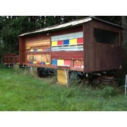 Prodej medu- Vladimír Koch- okres Znojmo