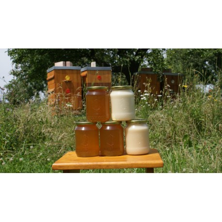 Prodej medu- Martin Renč- okres Nymburk