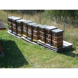 Prodej medu Oldřich Bohm- Smolné Pece- okres Karlovy Vary