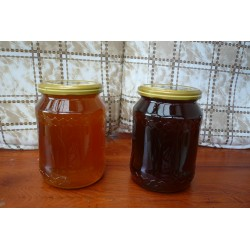 Prodej medu Miroslav Klusoň- Litomyšl- okres Svitavy