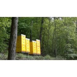 Prodej medu Petr a Lubomír Buchta- Adamov- okres Blansko