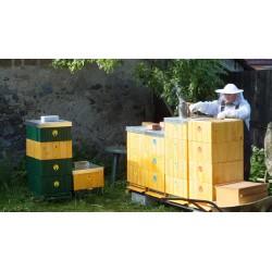 Prodej medu- Jindřich Kalina- Praha