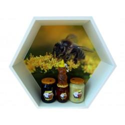 Prodej medu- René Švancara - Sloup- okres Blansko