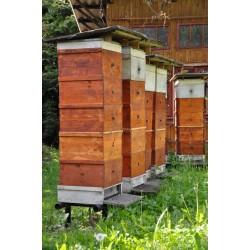 Prodej medu- Václav Hajžman- Plzeň