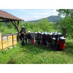 Prodej medu- EKOFARMA- okres Česká Lípa