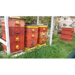 Prodej medu- Michal Syrový- Všetaty- okres Mělník