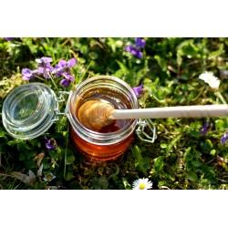 Prodej medu- Václav Benda- Vejvanovice- okres Chrudim