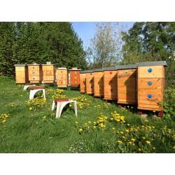 Prodej medu Jiří Šána- Brno-Kohoutovice- okres Brno-město