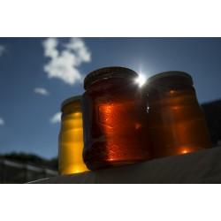 Prodej medu Petr Marek- Trhové Sviny- okres České Budějovice