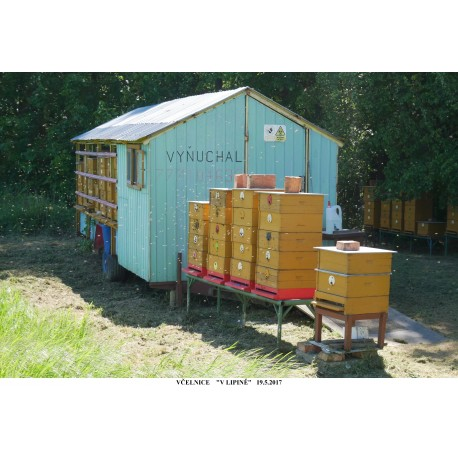 Prodej medu- Antonín Václav Vyňuchal- Žeranovice- okres Kroměříž