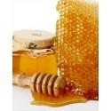 Prodej medu Jan Černohous- Nekvasovy- okres Plzeň-jih
