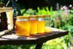 Med je naše tekuté zlato